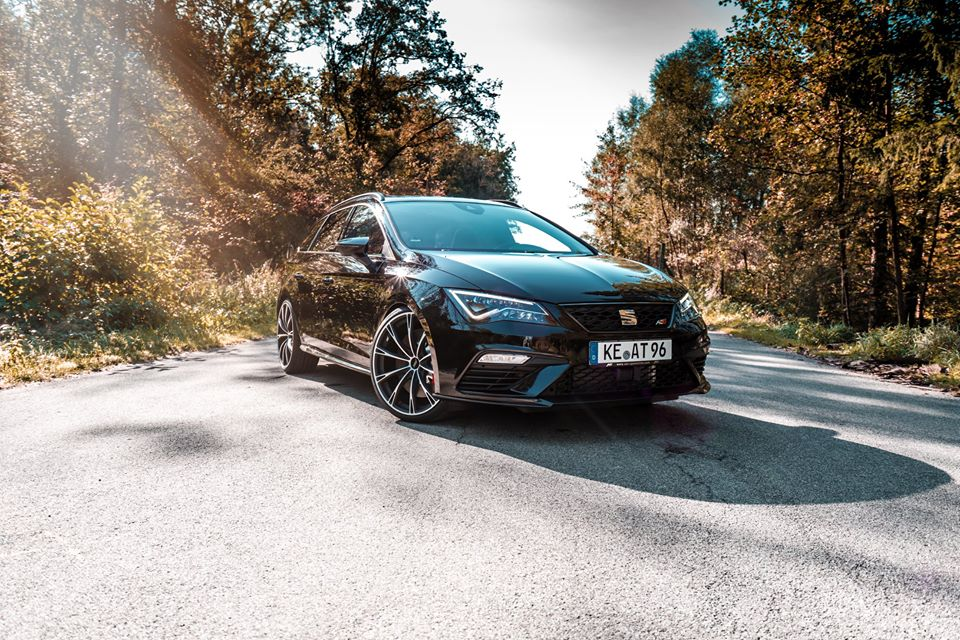 """Leon King"" – ST Cupra 300 Carbon Edition"